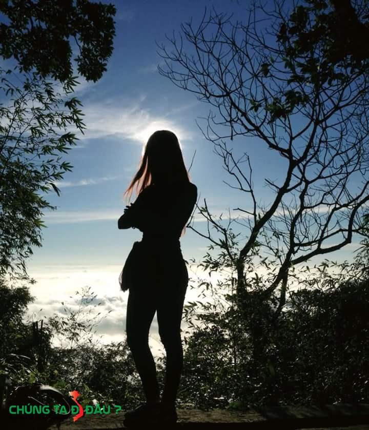 Biển mây Tam Đảo