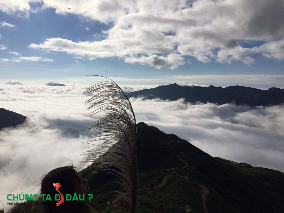 Biển mây trên sống lưng Khủng Long