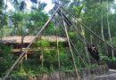 Làng nhà sàn Thái Hải – Ốc đảo giữa rừng xanh