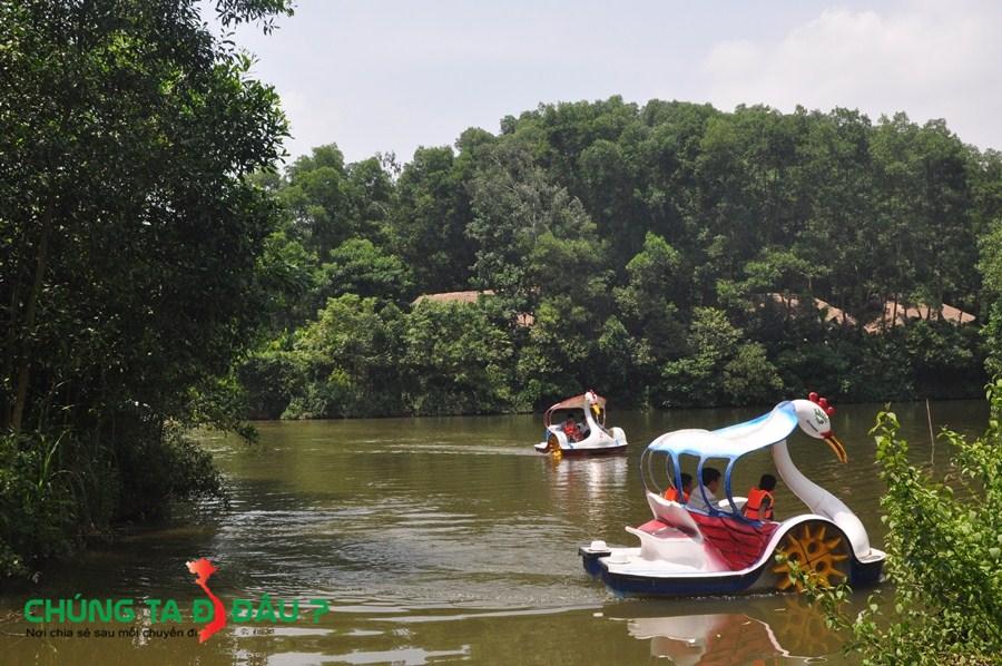 Đi Thiên Nga trong hồ ở Làng nhà sàn