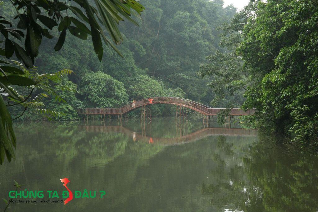 Cây cầu thơ mộng bắc qua hồ trông rất đẹp và lãng mạn