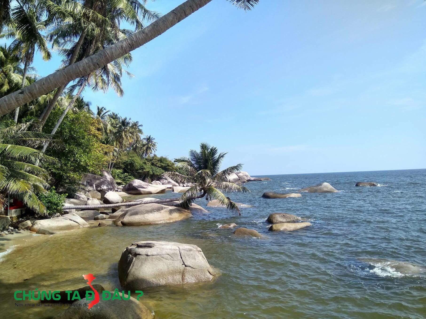 Rừng dừa trên đảo Hòn Sơn