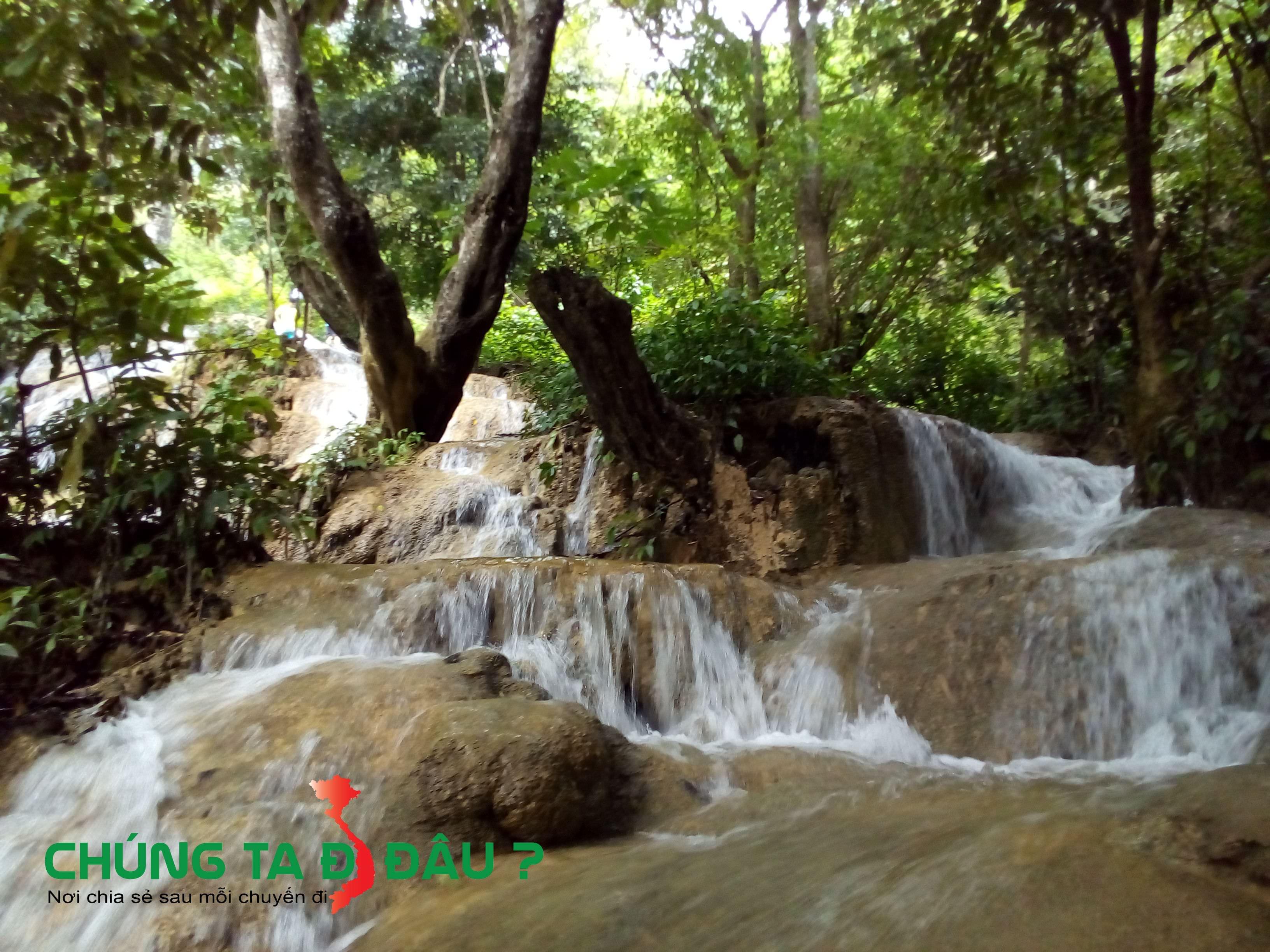 Nước chảy len lỏi qua từng gốc cây