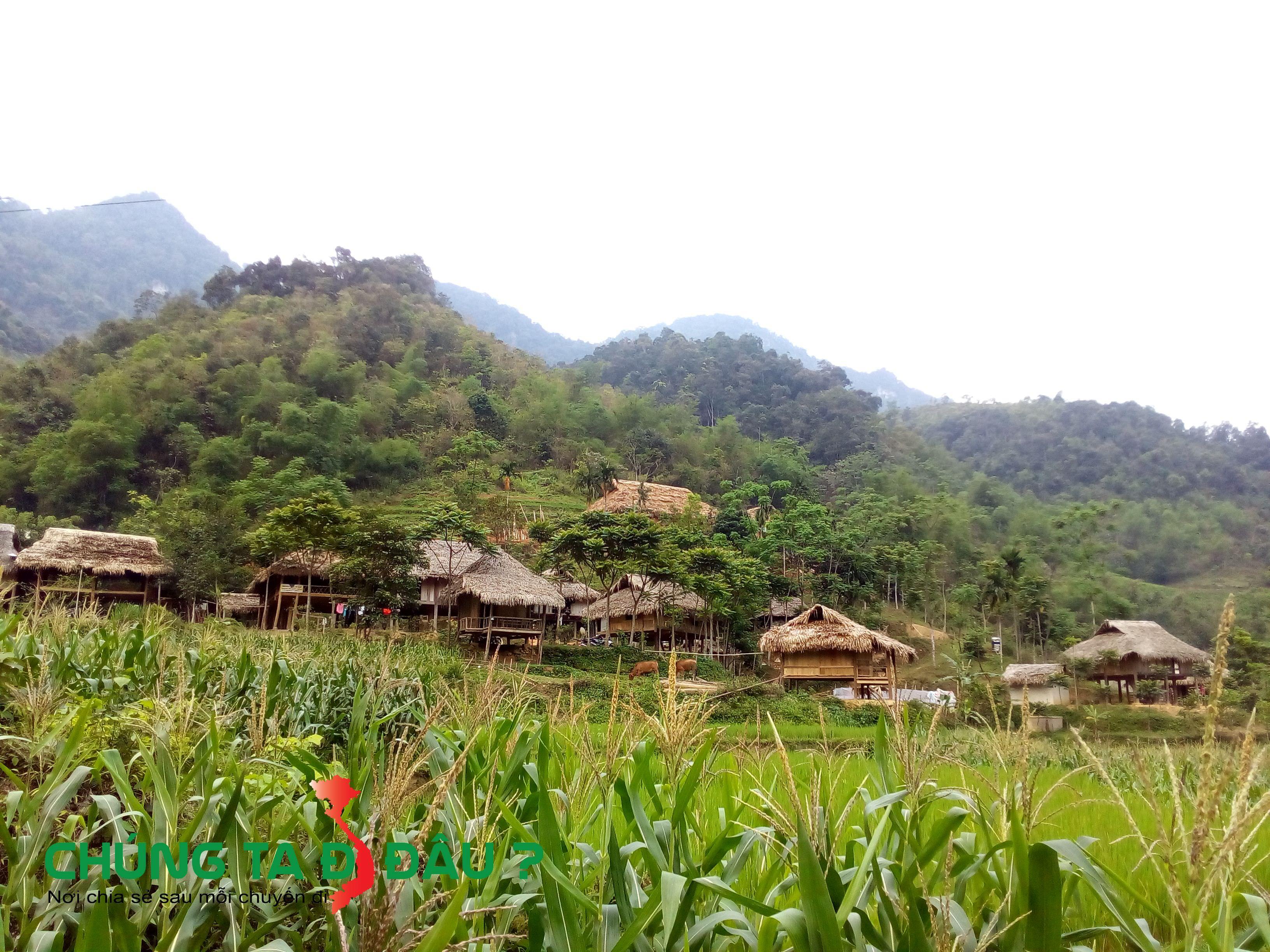 Những ngôi nhà sàn thơ mộng bên sườn đồi